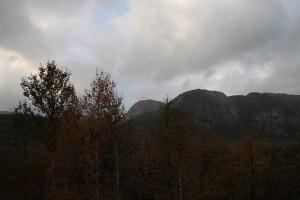 Geit i fjell 012