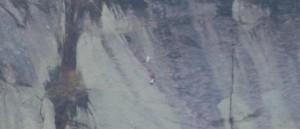 Geit i fjell redning 2